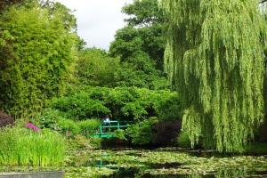 モネの庭,睡蓮,フランス,