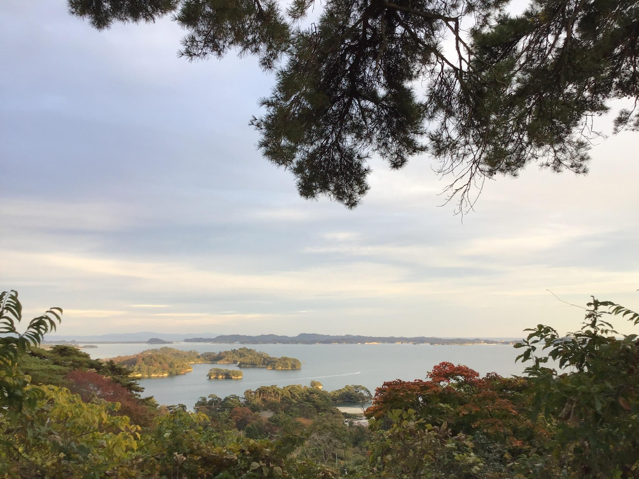 松島湾,西行戻しの松より望む,晩秋